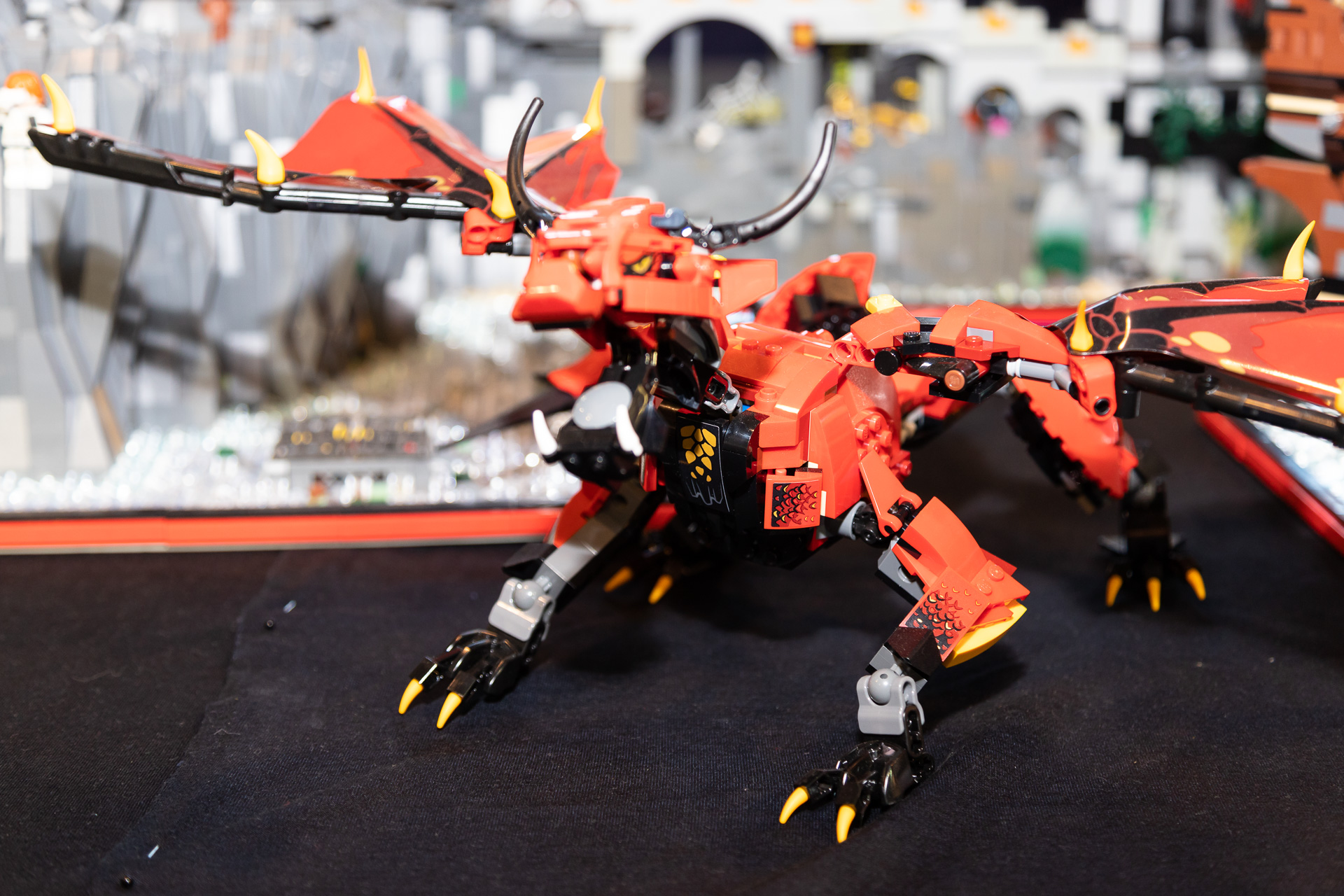 MG_4520